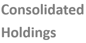 Consolidated Holdings 6